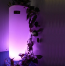 fioraia luminosa a led