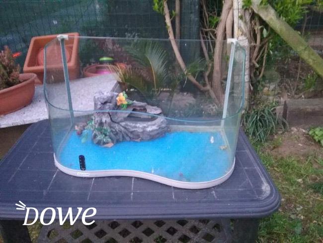 Vendita a massa carrara sports e hobby in vendita for Termometro per acquario tartarughe