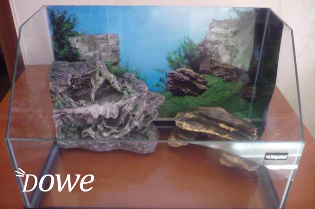Vendita a milano sports e hobby in vendita acquario per for Acquario tartarughe completo