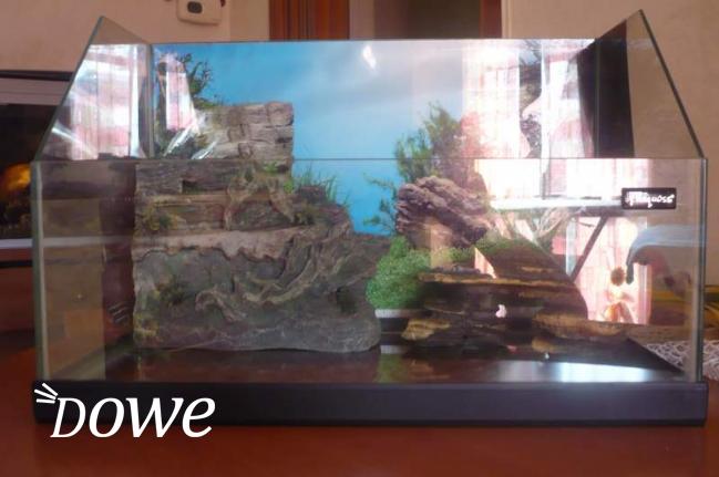 Vendita a milano sports e hobby in vendita acquario per for Acquario per tartarughe